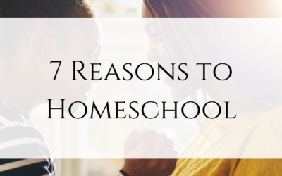 7 Reasons to Homeschool